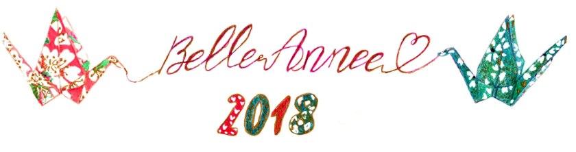 illustration voeux 2018 cocotte finale
